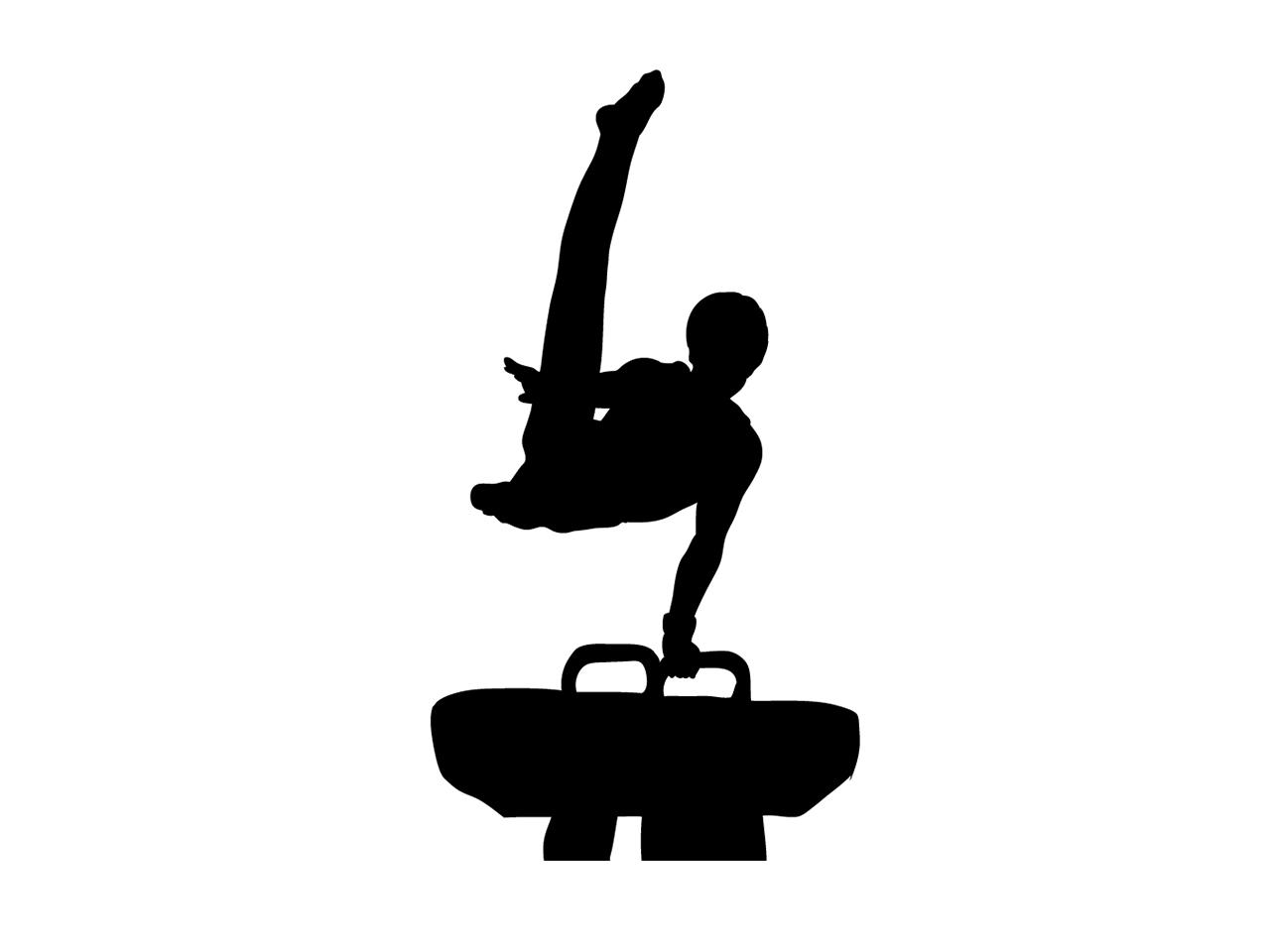 体育館体操競技、跳馬、あん馬用床金具