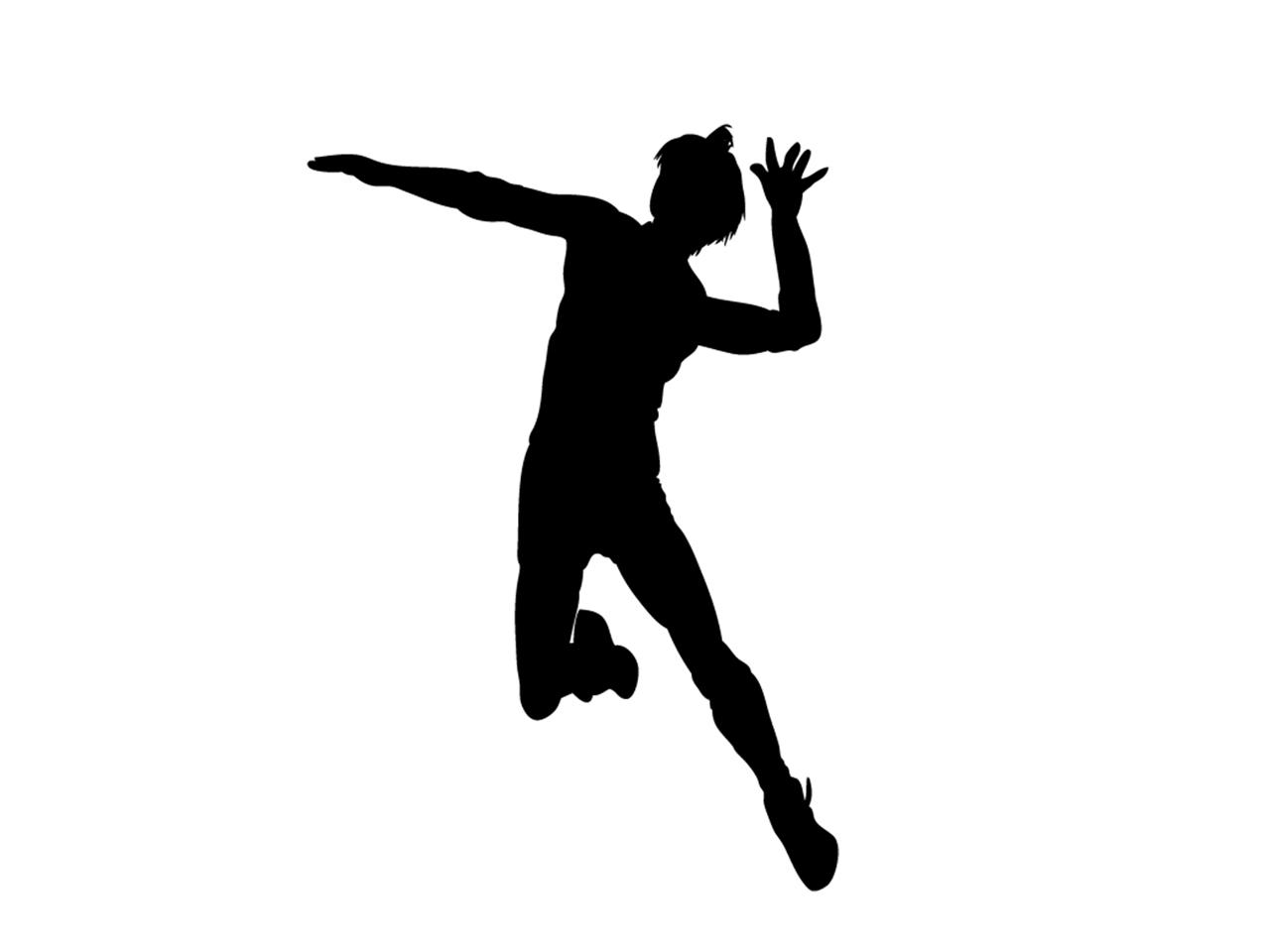 あん馬・跳馬・鉄棒・つり輪・段違い平行棒・低鉄棒・バドミントン・バレー・テニス用床金具