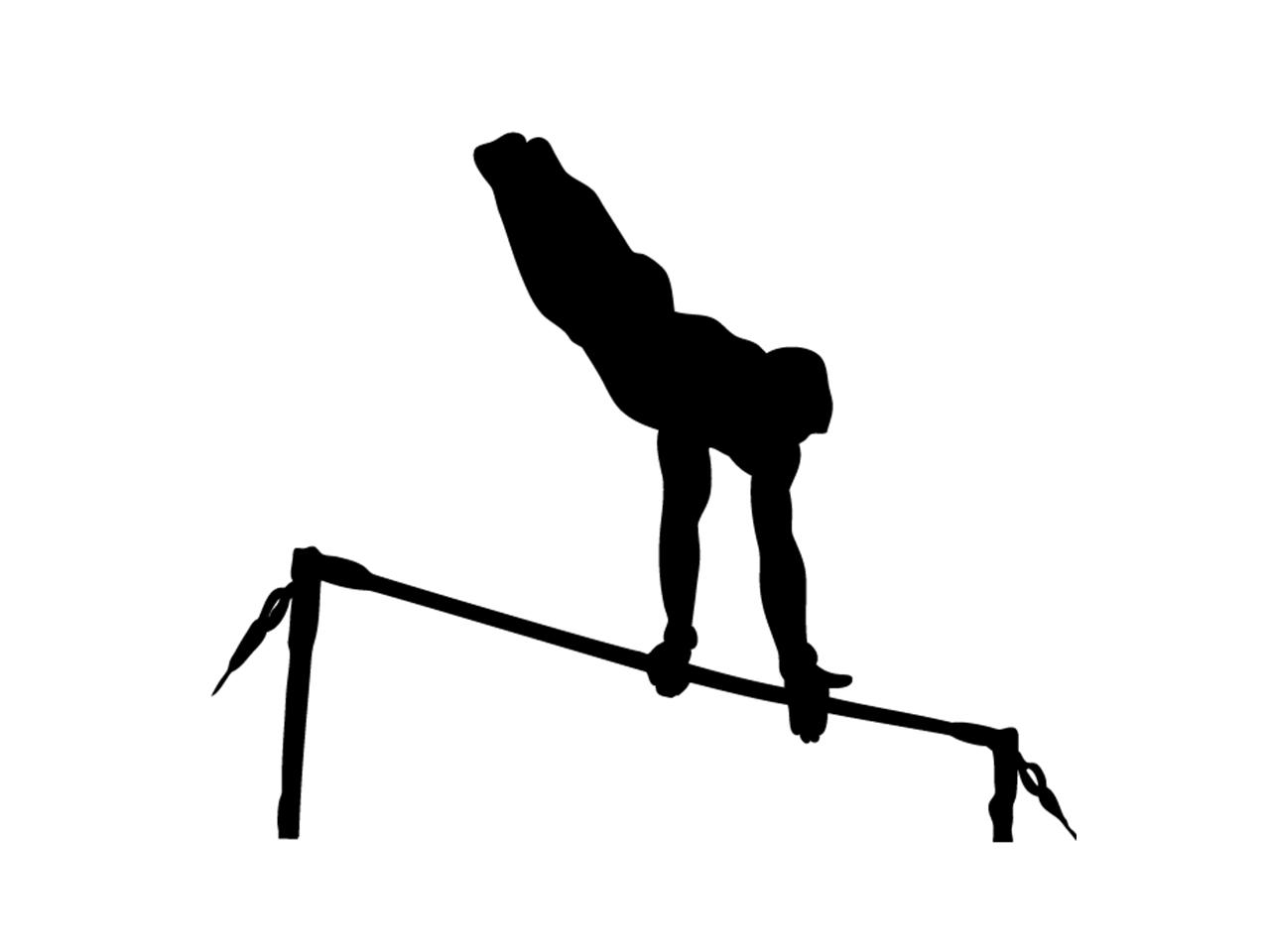 体育館低鉄棒用床金具